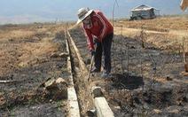 Nam Trung Bộ - Tây Nguyên: Hạn đến sớm, sương muối 'phá' cây trồng