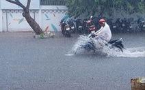 Cà Mau 'mưa vàng', ngập nửa bánh xe ngay giữa mùa khô