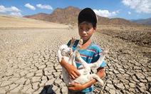 Du mục trên 'tiểu sa mạc' Ninh Thuận