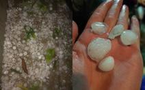 Nam Bộ chiều tối mưa dông, Bắc Bộ đề phòng lốc sét, mưa đá