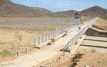 Gia súc ở Ninh Thuận bị đe dọa do thiếu nước trong nắng hạn kéo dài