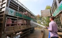 Doanh nghiệp chăn nuôi heo cam kết hạ giá heo hơi xuống 70.000 đồng/kg từ 1-4