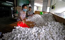 Bộ Nông nghiệp đề nghị tạo điều kiện để nhập khẩu giống tằm từ Trung Quốc