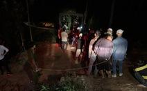 Hơn 40 con bạc sát phạt nhau giữa khuya ở rừng phòng hộ
