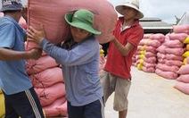 Lập đoàn kiểm tra việc xuất khẩu gạo, mời 3 bộ Tài chính, Công an, NN&PTNT tham gia
