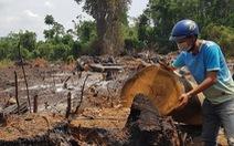 Khu bảo tồn thiên nhiên Ea Sô: Có tới 7-8 nhóm lâm tặc trà trộn để khai thác rừng