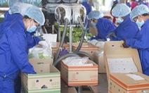 Công ty nông nghiệp của bầu Đức giải trình lý do lỗ hàng ngàn tỉ đồng