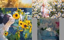 'Thách thức 7 ngày nghệ thuật' cho Facebook đầy ắp nụ cười