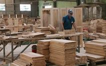 Xuất khẩu gỗ đóng băng khi 80% đơn hàng tạm dừng