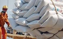 Vẫn chưa lô gạo nào trong hạn ngạch làm thủ tục xuất khẩu