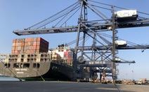 Thêm tuyến tàu chở hàng đi Bắc Mỹ giữa mùa dịch COVID-19