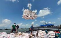 Thủ tướng yêu cầu thanh tra việc xuất khẩu gạo, làm rõ có hay không tiêu cực