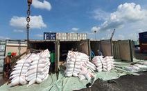 Ủy ban Kinh tế đề nghị xem xét trách nhiệm trong tham mưu xuất khẩu gạo