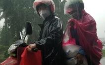 Mưa như trút, công nhân giúp nhau che hạt gạo sẻ chia kẻo ướt