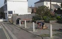 Buồn chán vì ở nhà nghỉ dịch, chàng trai vác cào dọn sạch cỏ cả khu phố