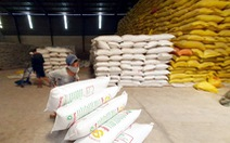Nhiều doanh nghiệp xuất khẩu gạo 'xù' hợp đồng cấp gạo dự trữ quốc gia
