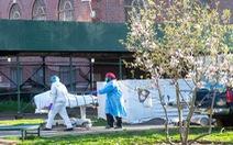 Mầm bệnh làm bùng phát dịch tại New York chủ yếu bắt nguồn từ châu Âu