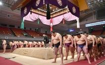 Virus corona 'hạ gục' một võ sĩ sumo Nhật