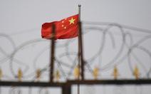 Thượng viện Mỹ thông qua luật trừng phạt Trung Quốc vì chuyện Tân Cương