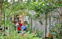 Đôi vợ chồng ở Sài Gòn biến khu đất 273m² thành vườn rau đầy cây trái sau thời gian cách ly