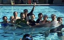 Thủy cung Trung Quốc dùng cá heo robot thay thế động vật hoang dã