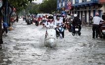 Bệnh sốt xuất huyết: đừng mất cảnh giác khi mùa mưa vào cao điểm