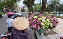 Người Hà Nội 'hít hà' không khí dịu mát sau những ngày 'như thiêu như đốt'