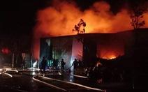 Cháy lớn nhà xưởng sát bên Viện Điều tra, quy hoạch rừng ở Hà Nội