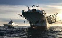 Săn lùng các đội tàu sát thủ đại dương - Kỳ 2: Càn quét Nam Mỹ