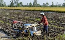 Không sửa sớm Luật thuế 71: thiệt hại cả tỉ USD, doanh nghiệp, nông dân thiệt