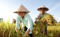 Bayer hỗ trợ hai triệu nông hộ sản xuất nhỏ chịu tác động bởi COVID-19
