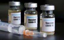 Vắcxin AZD 1222 hiệu quả trong thử nghiệm trên heo