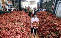 6 tháng đầu năm 2019, nông sản qua Trung Quốc giảm mạnh, tại sao?