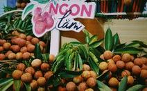 Vải thiều Việt Nam đang được bán tại 250 siêu thị ở Nhật Bản