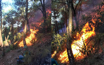 Cháy rừng lan ra 3 huyện, cả ngàn người dập lửa