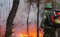 Video cả ngàn người chữa cháy rừng phủ 3 huyện trong nắng 40 độ C