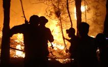 Nghệ An yêu cầu công an truy tìm thủ phạm gây cháy rừng