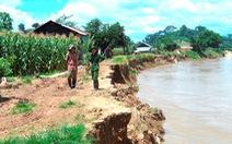 Ngăn sông Cha sạt lở hàng chục kilomet vì khai thác cát