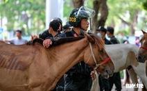 Cảnh sát kỵ binh trên thế giới đang làm những việc gì?