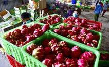 Nông sản Việt sẵn sàng vào EU