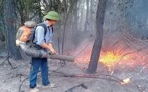 Triệu tập người phụ nữ nghi đốt rác gây cháy rừng ở Nghệ An