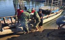 Tìm thấy thi thể cháu bé mất tích trong vụ tàu câu mực bị đâm chìm trên biển