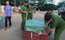 Khai quật gom hơn 13 tấn chất thải chưa xử lý tại 5 vị trí trong công ty Đài Loan