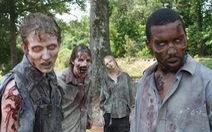 Zombie: Dòng phim thây ma xác sống kinh sợ tại sao lại 'quyến rũ' đến thế?