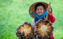 Khoảnh khắc cô gái chặt dừa nước đoạt giải nhất ảnh Cần Giờ