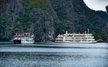 Hạ Long, Lan Hạ 'ngăn sông cấm chợ': Lợi ích cục bộ gây lãng phí tài nguyên quốc gia