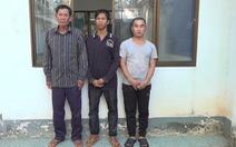 Triệt phá 4 đường dây đưa người trái phép từ Campuchia vào Việt Nam