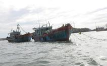 Quảng Bình sẽ xử phạt nặng hai tàu giã cào