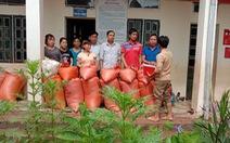 Bản Mông nghèo gom tiền, gạo, thóc cho giáo viên vùng lũ Điện Biên