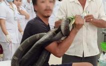 Chuyện người bị rắn cắn và gói hỗ trợ đợt 2